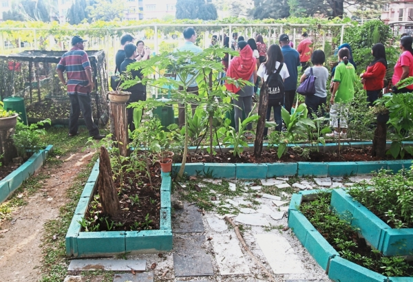 The community garden's produce is shared by 30 families in the USJ 14 community.