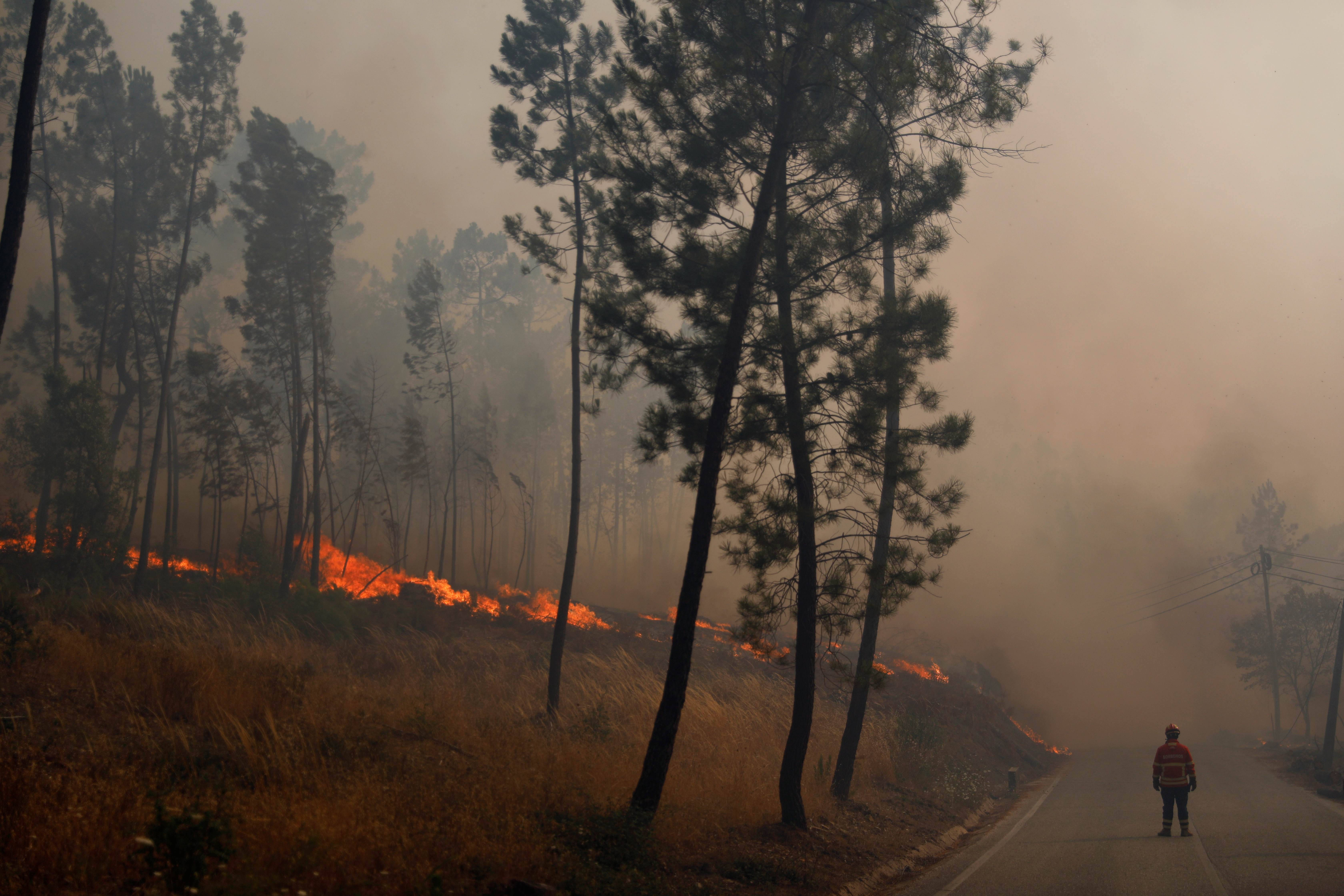 Firefighters help to put out a forest fire in Chaveira, Portugal July 22, 2019. REUTERS/Rafael Marchante