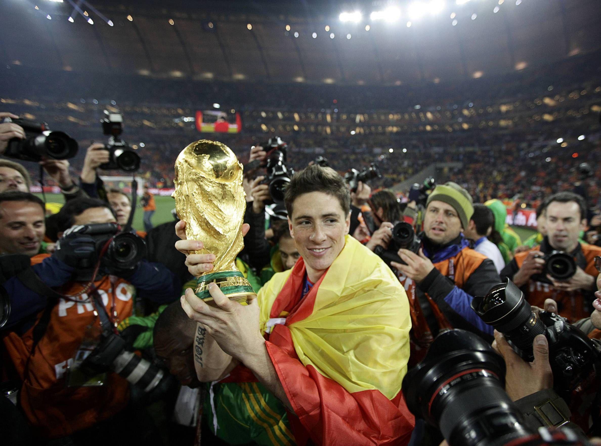 Image result for fernando torres world cup 2010