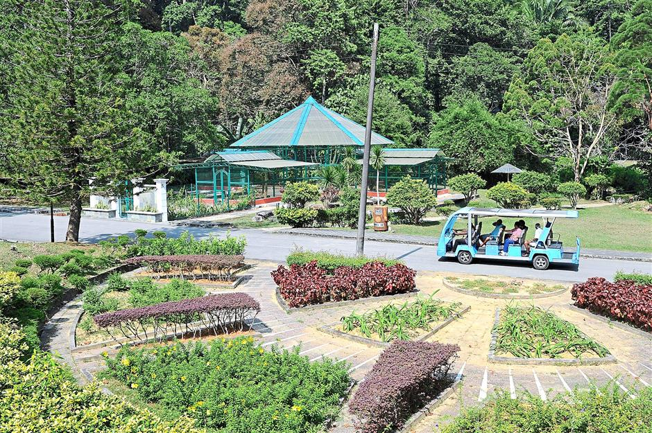 Scenic ride: Tourists viewing the Garden's attractions during a tour on a battery-operated tram.