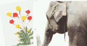 f_pg24elephant