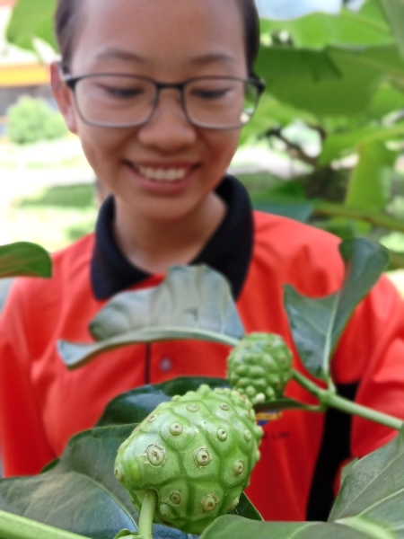 SMK Bandar Baru Sungai Long Form 4 student Khor Pei Shi showing the noni tree which she has watered and fertilised. (Right) At SK Ulu Semenyih, Bahasa Melayu and Music teacher Khairul Razi Asharani takes charge of maintaining the mini zoo and herb garden with the help of willing pupils.