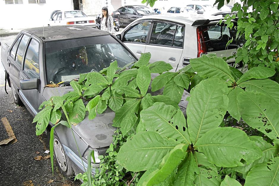 1 A car covered with creepers has been dumped in Desa Intan.