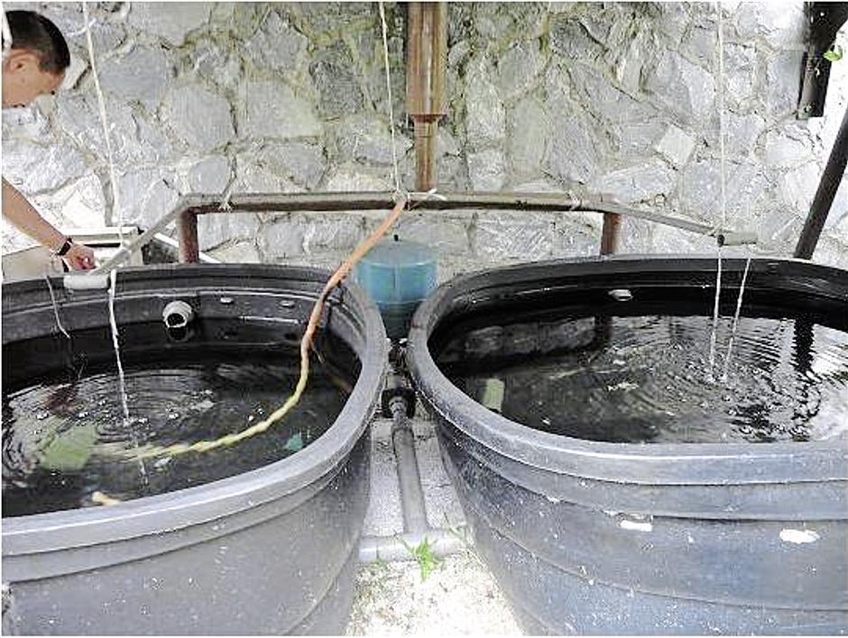 Rain water harvesting system installed as part of Petaling Jaya City Council (MBPJ) low carbon framework 2014