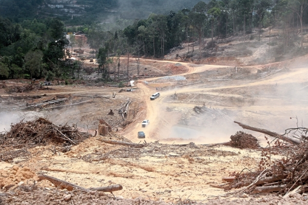 The land near the Bukit Bayu residential area being cleared for development.