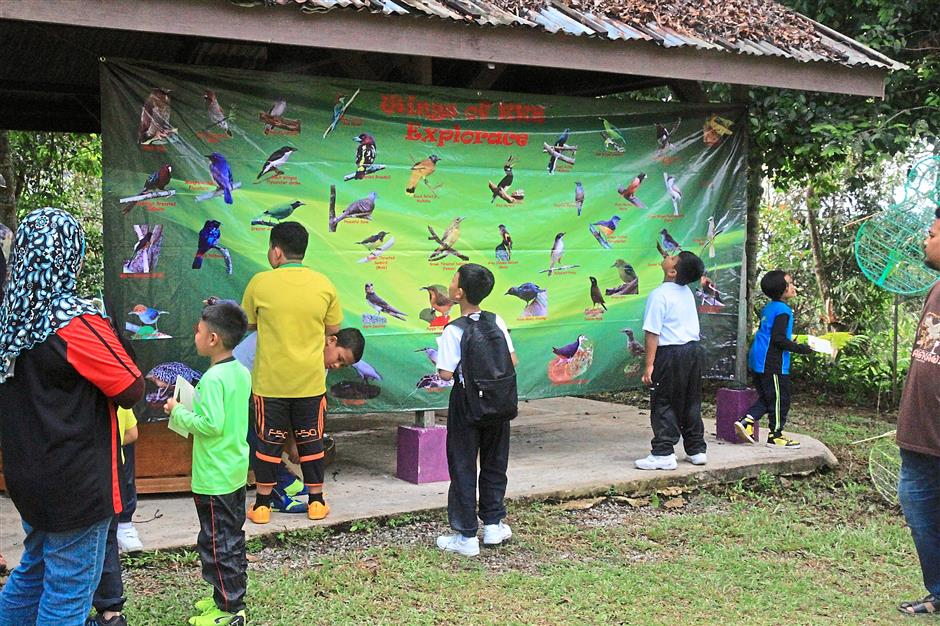 Is that the one: Children looking at the banner to identify the species of birds they spotted.