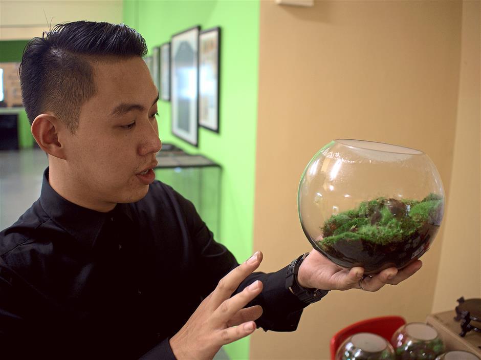 Nature in miniature: Chau showing an example a small vivarium.