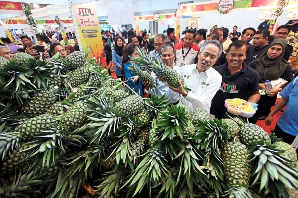 Ahmad (front) showing the pineapples after launching the state-level JTDL promotional tour. — Bernama
