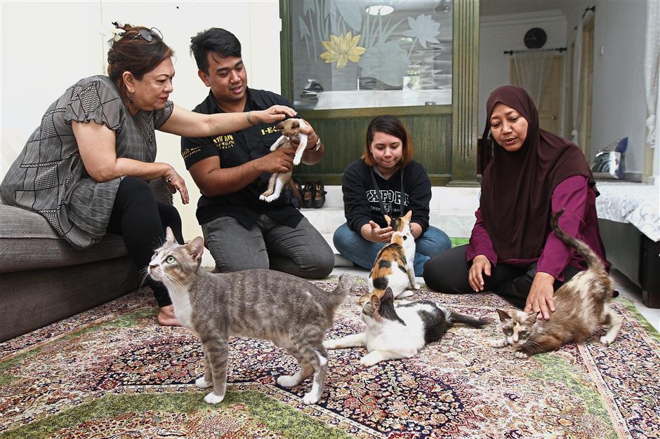 Asmah (right) and her cats with fellow Sri Kenangan Condominium residents (from left) Adibah, Faezul and Ninna Cornelia.