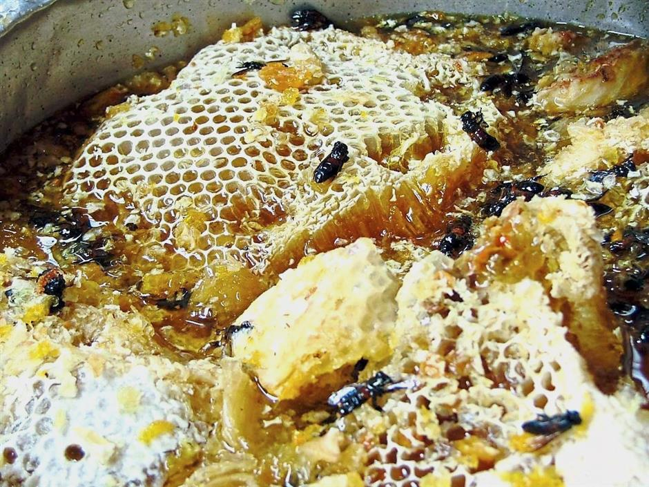 Give me the honey! | The Star Online