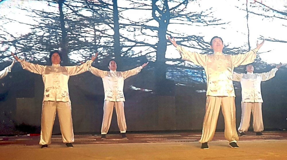 Qiqong practitioners demonstrating some moves at the gathering.