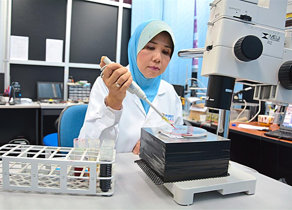 Professor Ir. Dr. Fatimah Ibrahim, head of the Centre for Innovation in Medical Engineering (CIME) at Universiti Malaya demonstrates the use of the ELISA CD reader device which can detect the presence of dengue virus. FOR BYTZ USE ONLY.