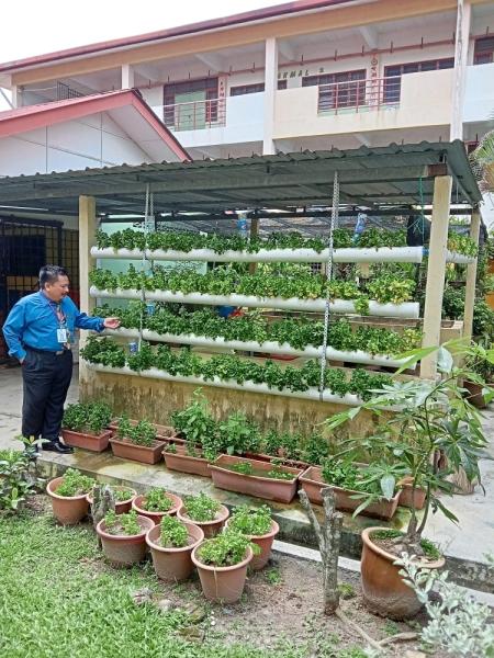Fitri showing the hydroponic wall of plants at SMK Bandar Baru Sungai Long.