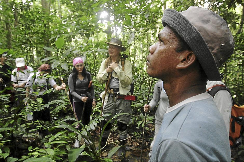 If entering an unfamiliar jungle area, it's best to engage a local guide. See here is Alias, an Orang Asli guide for the Citizen Action for Tigers (CAT) Walk whose keen eyes can spot tiger snares used by poachers.