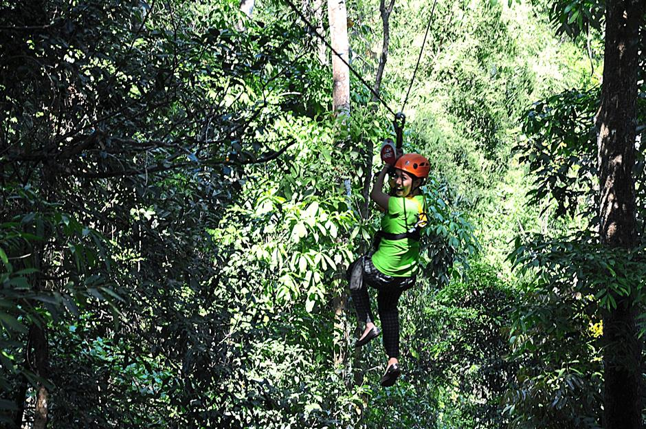 On the Flying Squirrel in Pong Krai, one goes on an adrenaline-filled ride across the green canopy of Chiang Mai's jungle.
