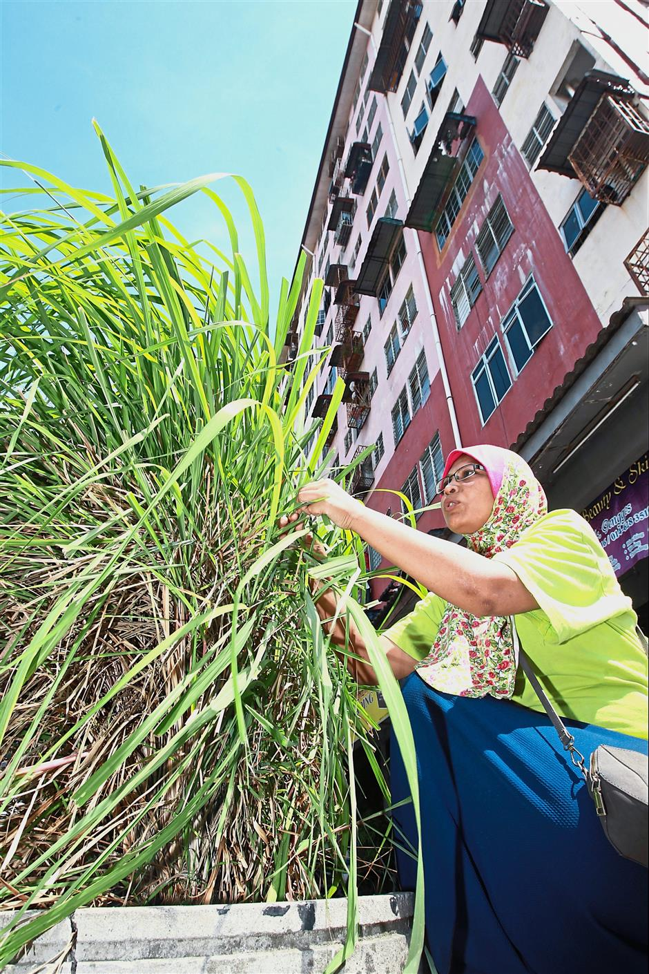 Residents in Desa Mentari block 1, Petaling Jaya will be taking their gardening to the next level with the community gardening project. At present, residents convert small spaces to plant herbs.