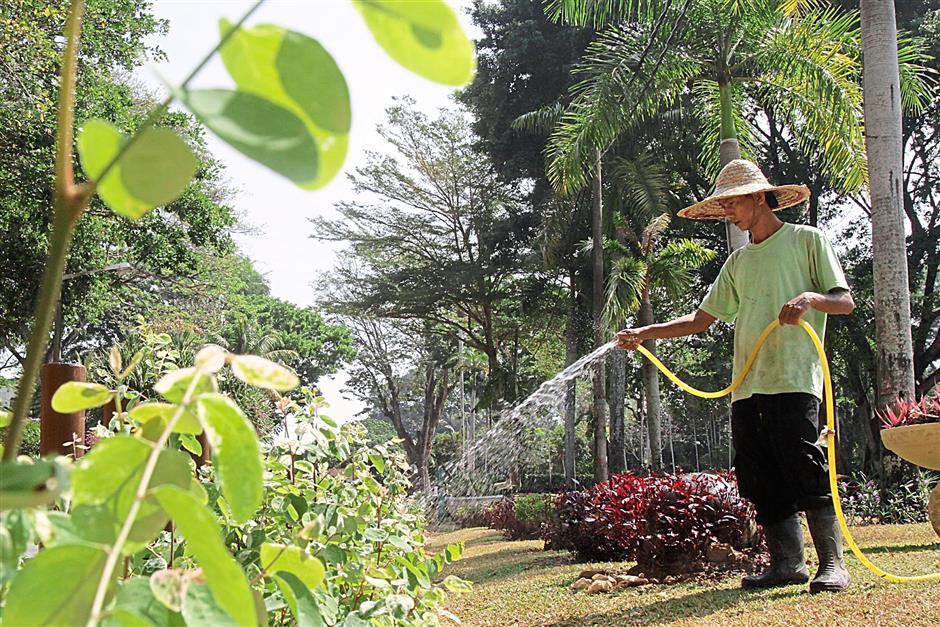 A worker watering the plants at the Penang Municipal Park in Georgetown, Penang yesterday..//CHAN BOON KAI/THE STAR//(12nd Feb 2014)