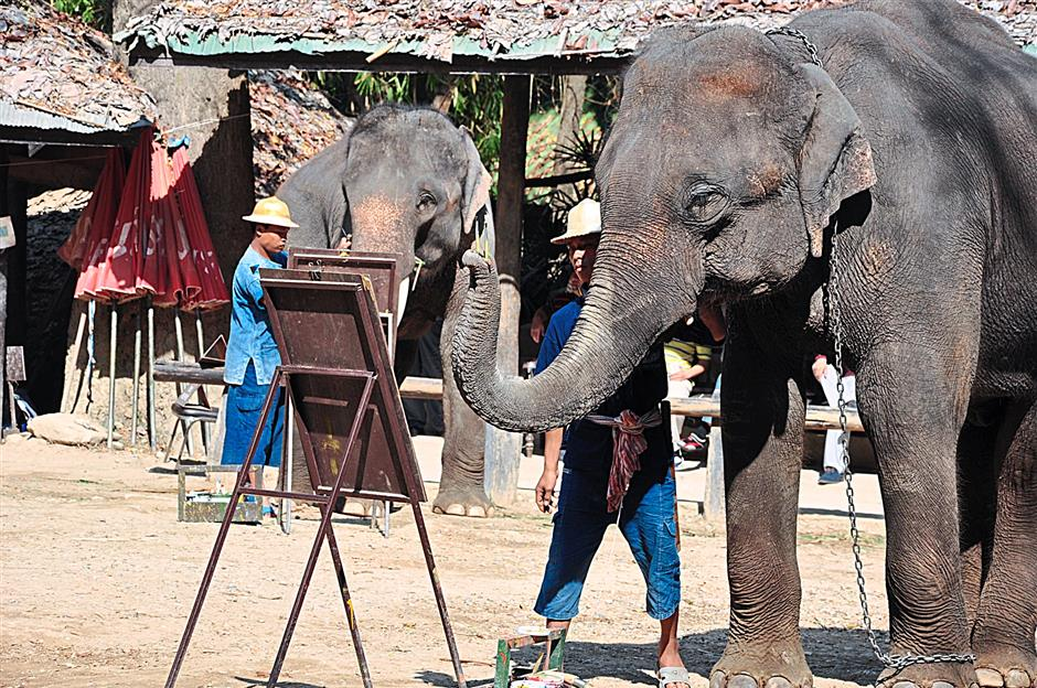 The elephants of the Maesa Elephant Camp in Chiang Mai displayed unbelievable artistic prowess besting even the writer's best efforts while in school.