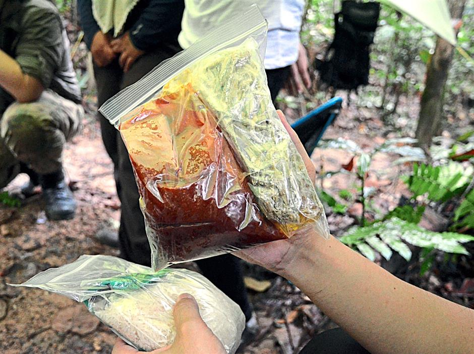 Nasi lemak in the woods - the right hand holding a packet of improvised sambal made from a mix of oil, chilli paste, salt and sugar in one ziplock bag. Rice and pre-fried ikan bilis are in the other bag.