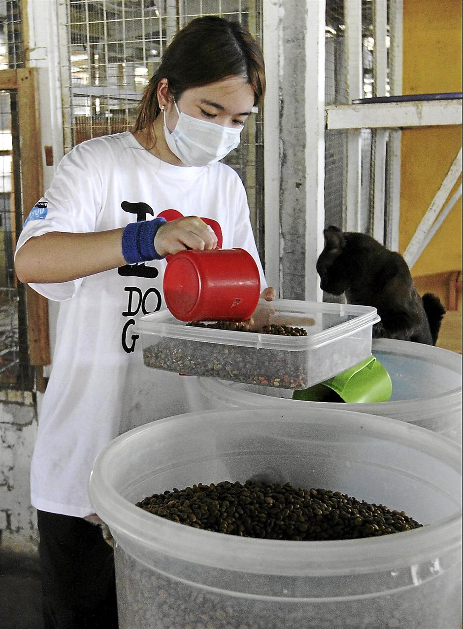 Volunteer distributing food for dogs. Do Good Day Out monthly project by Do.Good.Volunteer at Furry Friends Farm 18/8/13