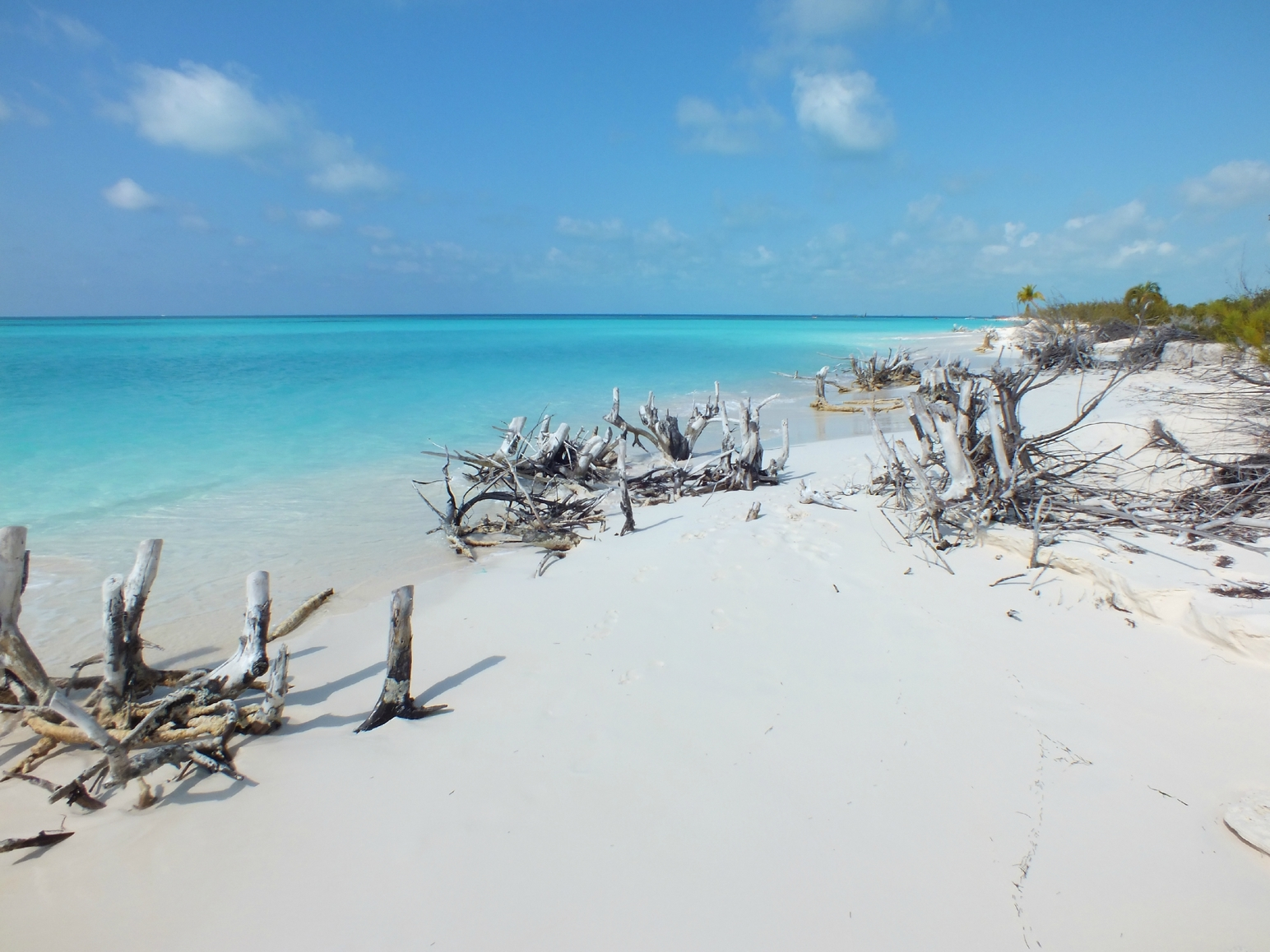 Playa Paraiso Beach - Cayo Largo, Cuba. Photo: TripAdvisor