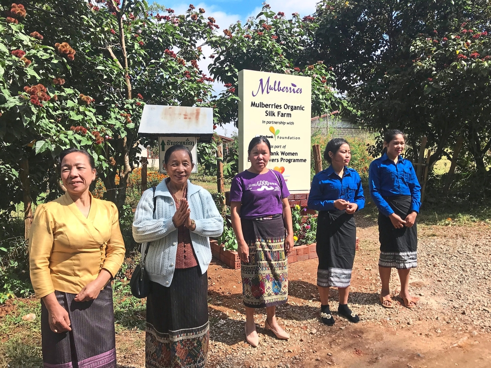 Mulberries farm was set up as a research and model silk farm that has grown to accommodate 3,000 farmers, weavers and artisans from more than 200 villages.