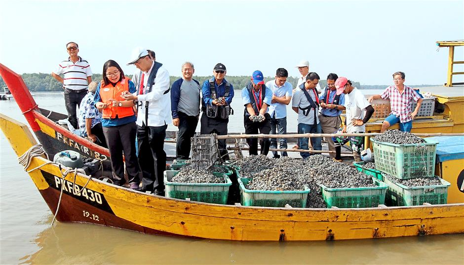 Cause for concern: Dr Mah and Kuala Sepetang assemblyman Chua Yee Ling (left) checking empty cockle shells in Kuala Sepetang.