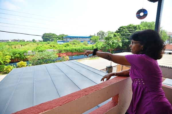 Suleka pointing out the abandoned project site overgrown with wild vegetation across from her house.