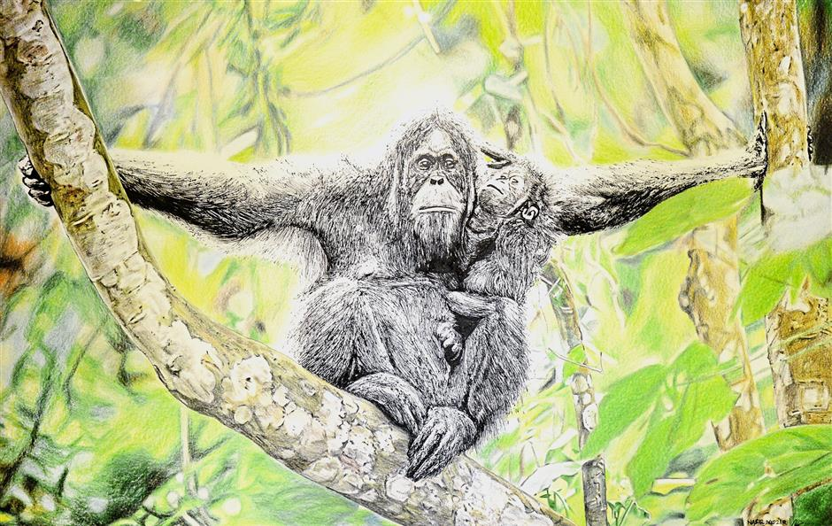 Nasir Nadzir's 'Memory of Orangutan', done with ink and colour pencils.