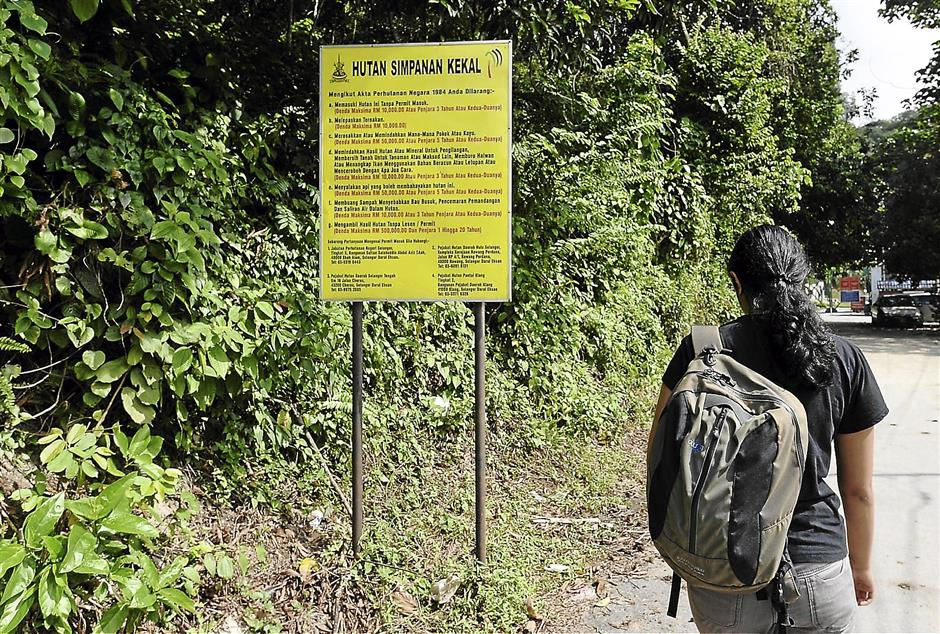 A sign by the Selangor Forestry Department  at the barely visible entrance to Bukit Tabur in Taman Melawati indicated that a special permit is needed to enter the forest.
