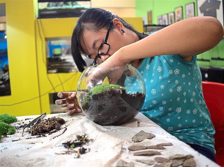 Delicate work: Arranging plants inside a vivarium takes patience.