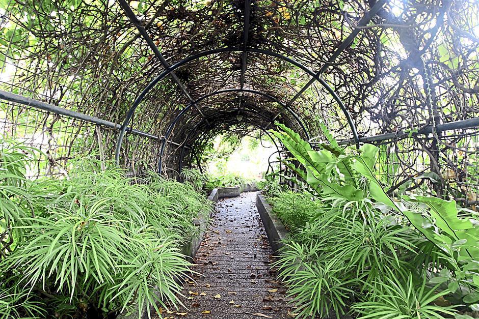 The Secret Garden in 1Utama shopping centre offers urbanites a little respite from hustle and bustle.