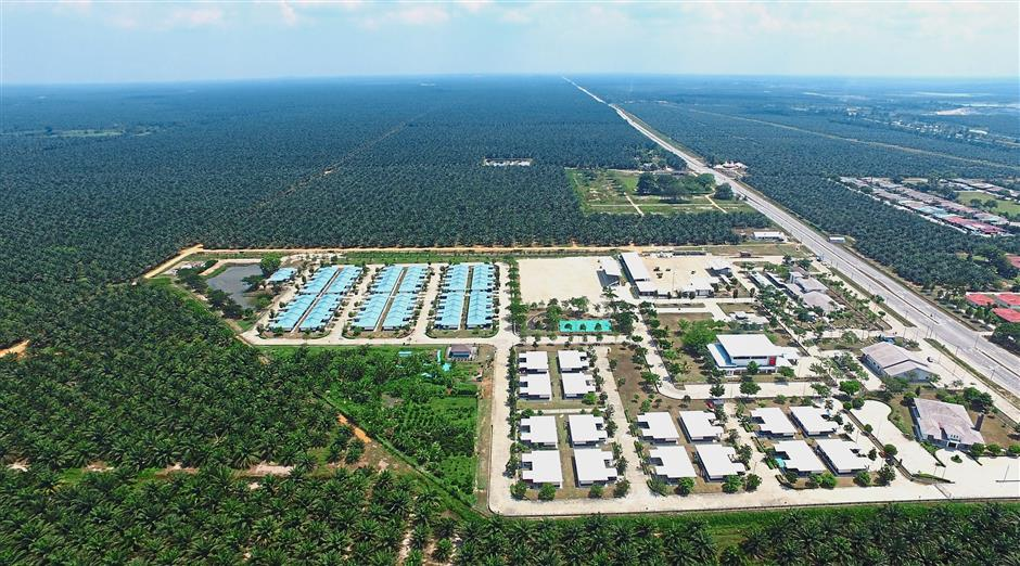 kkk: Drone photo of Tennamaram palm oil estate. To be use in future or archive.