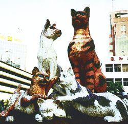 f_pg19cats
