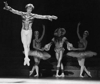 Nureyev changed the male ballet danceru2019s traditional role of merely providing support to one that is more equal to the ballerinau2019s creative and starring role.