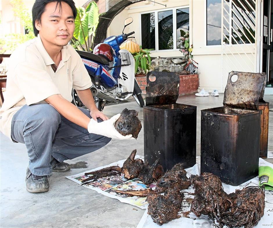 A wildlife officer with serow body parts seized from a bomoh couple in Kampung Ulu Jepai, Lenggong, Perak, in 2007. — Filepix
