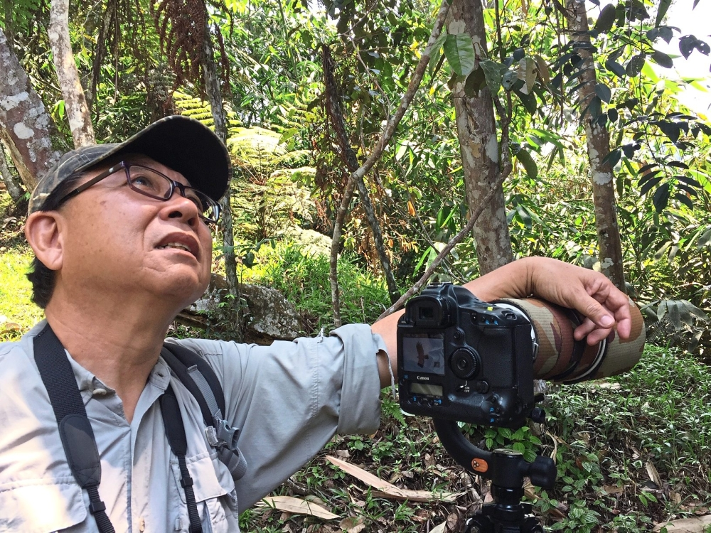 Avid bird watcher Henry Goh is always available to identify birds spotted in the lush forest.