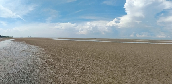 The uniqueness of Sepang's only beach in Bagan Lalang is during low tide when one sees a wide sandy flat area stretching as far as the horizon.