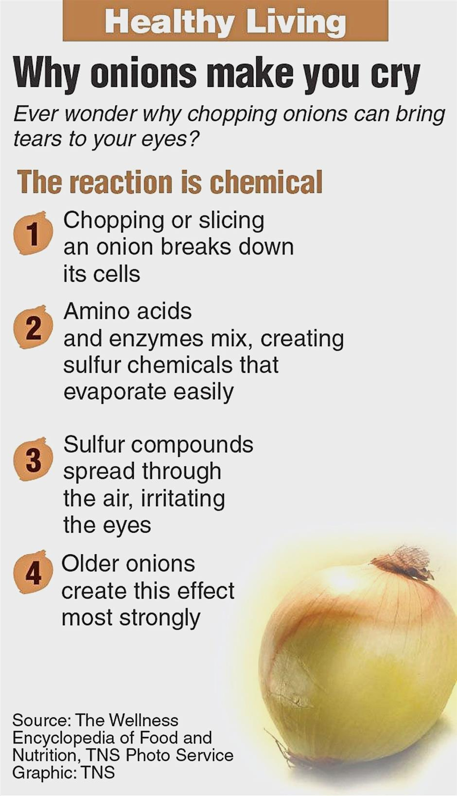 Weekly Healthy Living nutrition graphic: Onion. TNS 2016