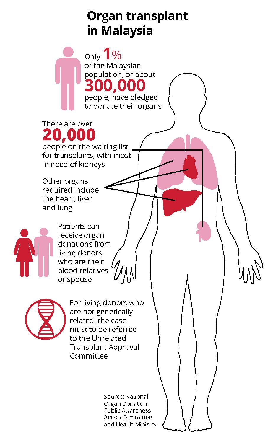 A price tag for human organs | The Star Online