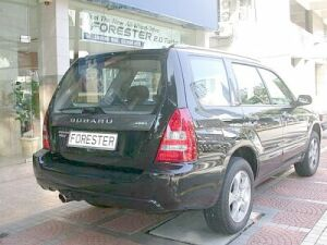 p19forester