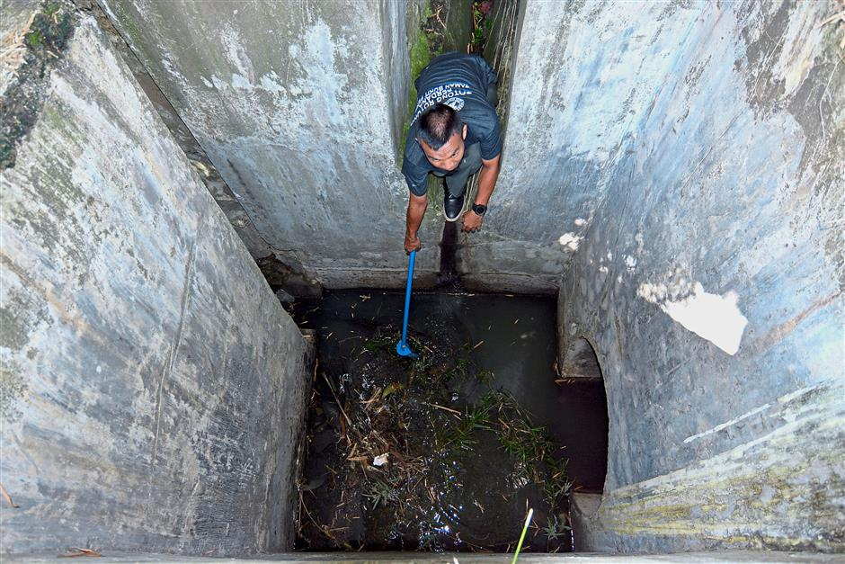 Drains such as this are ideal mosquito breeding spots as it has clean stagnant water. Regular clean up is needed to ensure that garden debris from the drains are cleared.