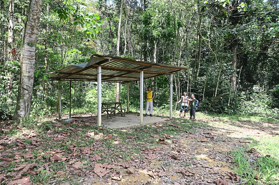 The 'pondok' that marks the start of the forest climb.
