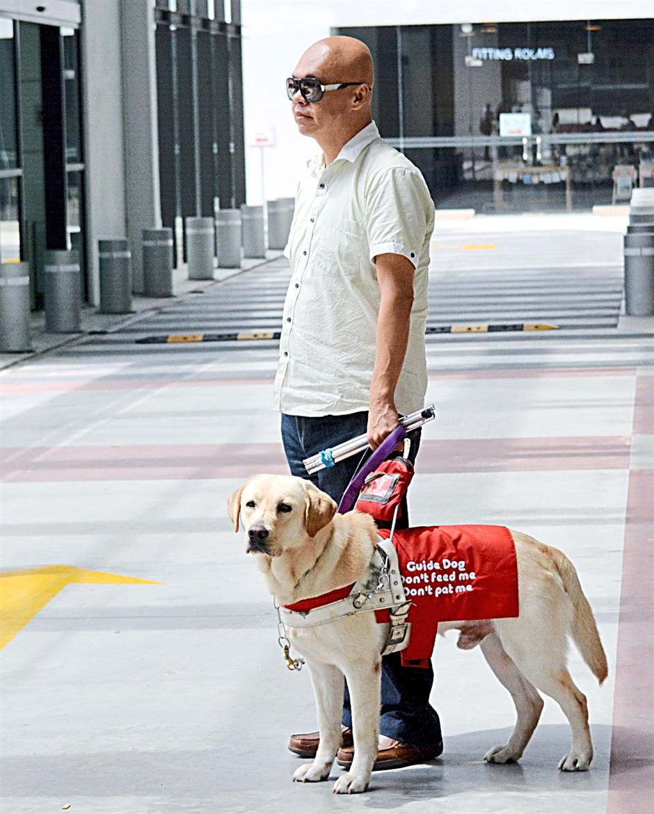 Dogs for sight press conference - introducing Malaysia's very own first and only guide dog for the blind.