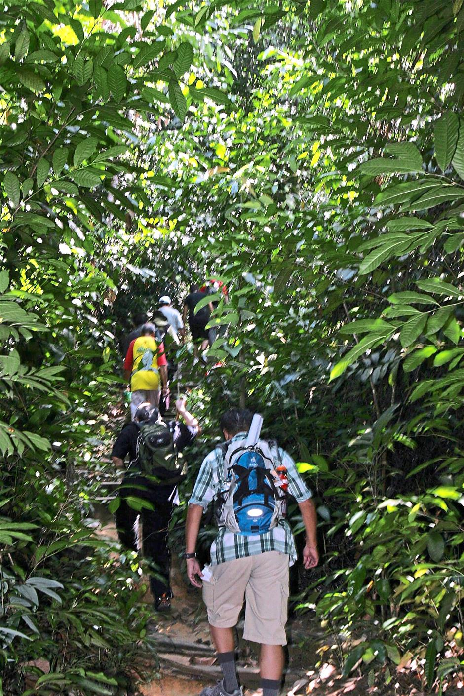 """Follow-up process: Supporters and volunteers hiking up the Bukit Gasing Education Forest during part two of the Association of Backpackers Malaysias """"Save Bukit Gasing?campaign, which included an environment audit and marking a new trail in the forest."""