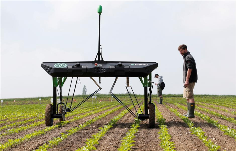 REFILE - ADDING PICTURE TAKEN  The prototype of an autonomous weeding machine by Swiss start-up ecoRobotix is pictured during tests on a sugar beet field near Bavois, Switzerland May 18, 2018. Picture taken May 18, 2018. REUTERS/Denis Balibouse