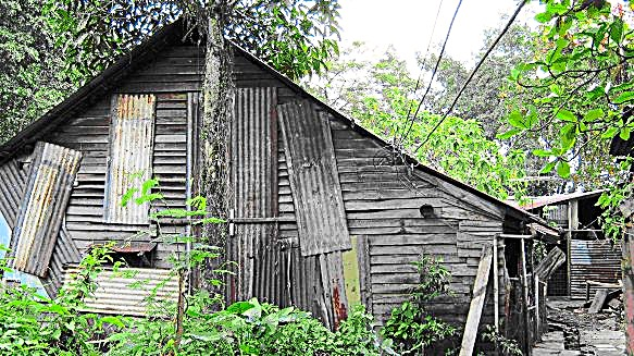 Belinda Lee's derelict humble abode as it stands 30 years later.