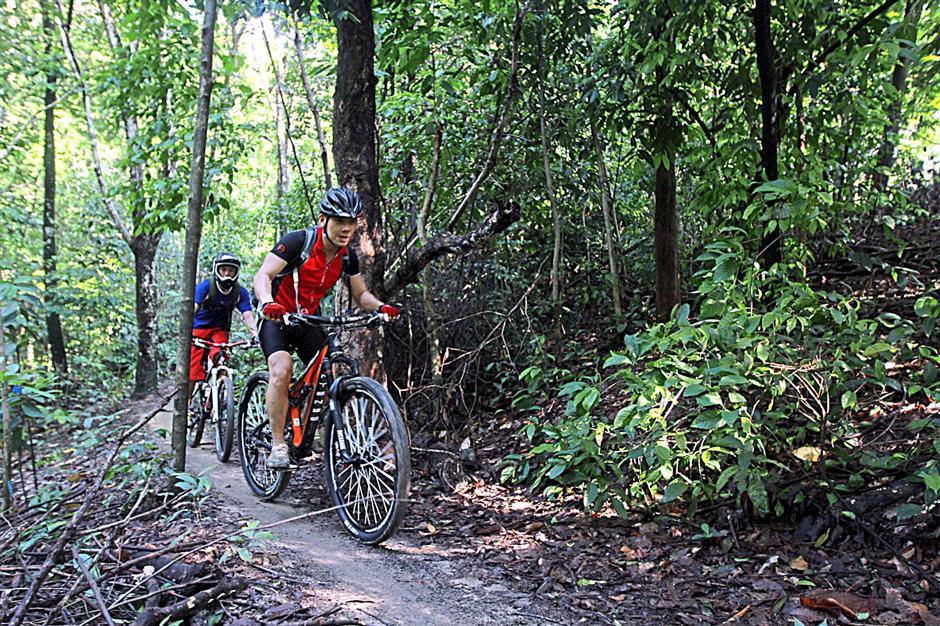 One of the many mountain bike trails around Bukit Kiara.