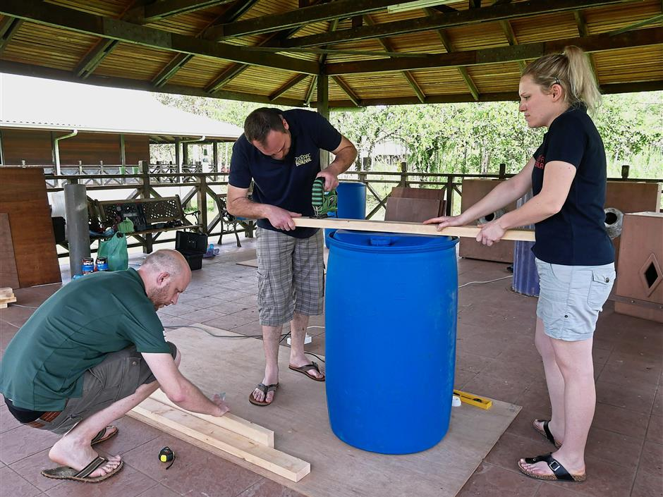 (from left) Vercoe, Beauval Zoo's birds head zoo keeper Remy Figueira and Pelletier measure wooden planks to line the inside of the artificial nest box.