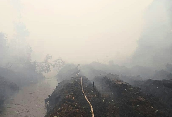 Areas near forests in Tukau are smoky, with low visibility.